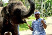 Agus Bali Tourist Guide